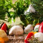 vegetables landscape, garden, vegetables